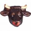 PlÁstico protetor toro