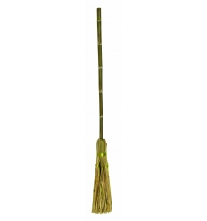 """Witch""""s broom"""