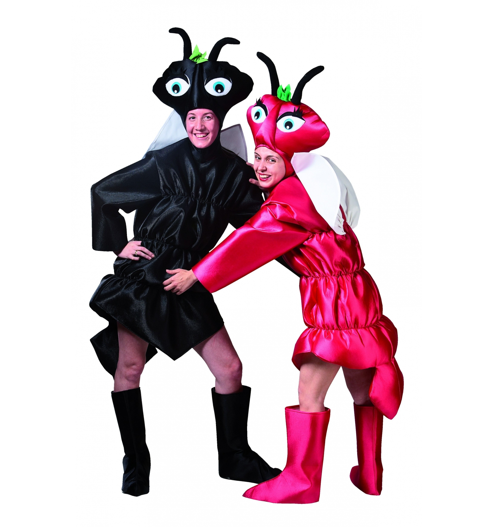 D guisement fourmi rouge - Fourmi rouge et tamanoir ...