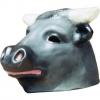 Cabeçudo touro