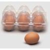 Hartes eier imitation. scherz artikel